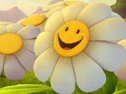 SUNFLOWER SMILEY FACE