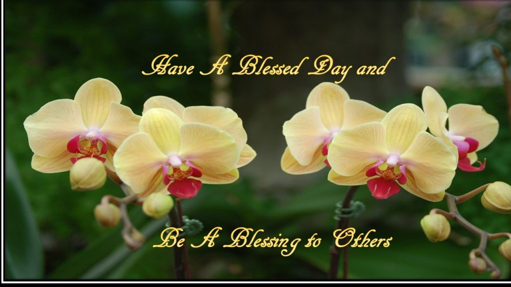 Have a Blessed Day and Be a Blessing to Others Quote