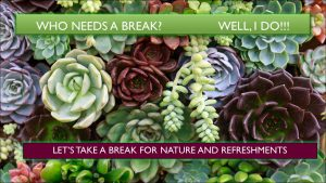 Nancy's Novelty Infographics, Break, Succulents Collection, My Persuasive Presentations, LLC