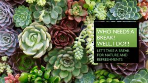 Nancy's Novelty Infographics - Breaks Succulent Collection My Persuasive Presentations, LLC