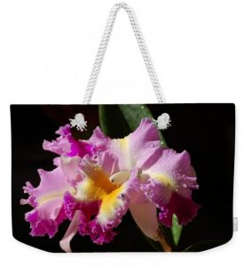 Nancy's Novelty Photos on Pixels Products - Best Cattleya Tote Bag