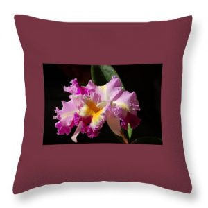 Nancy's Novelty Photos in Pixels Products throw pillow