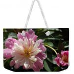 Photo pf a pink and white dahlia on a weekender tote bag