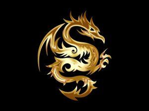 fiery gold dragon on black background