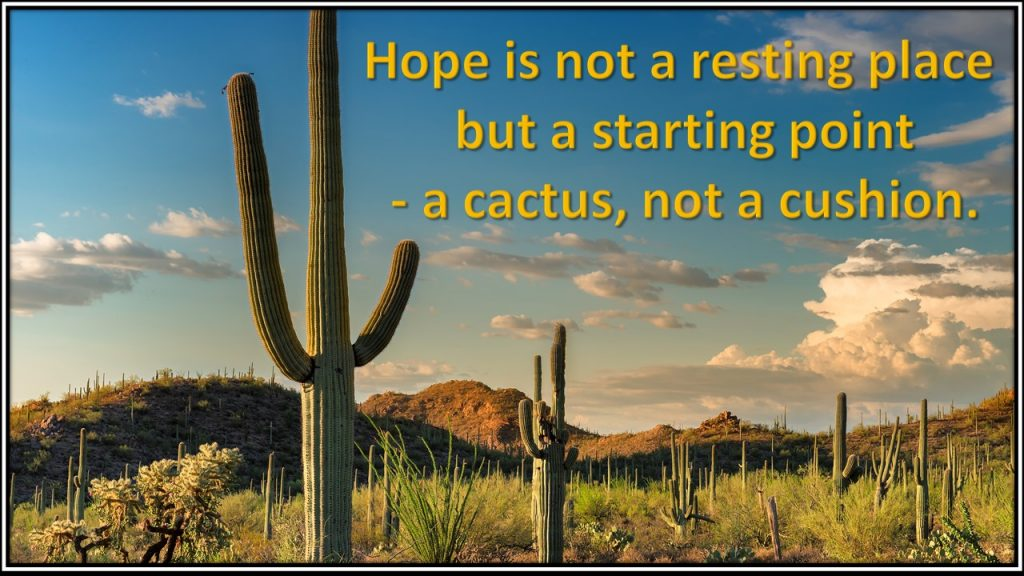 """""""Hope is not a resting place, but a starting place: a cactus, not a cushion."""""""