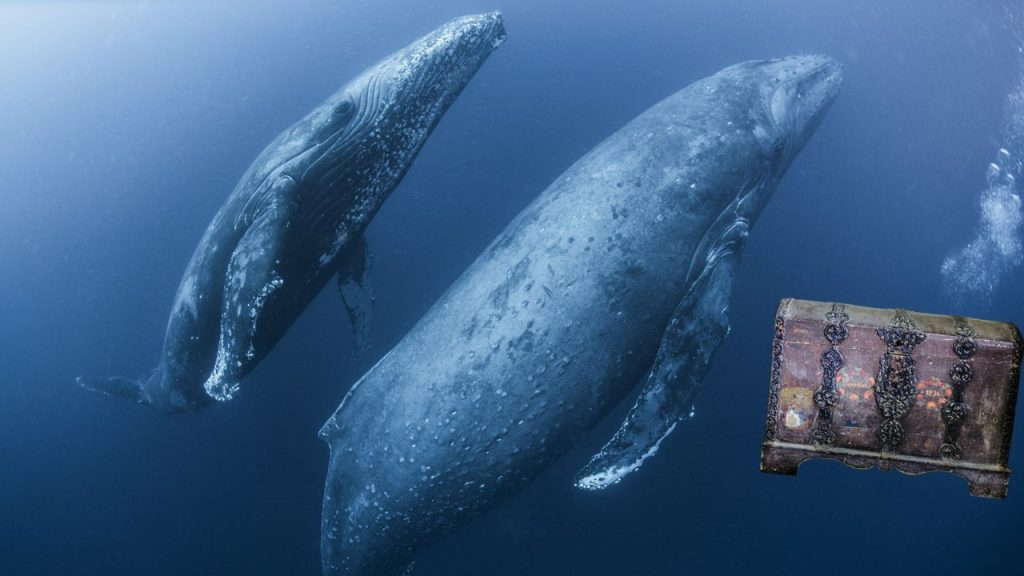 whales and a treasure chest #prompt #lock