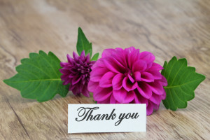 Testimonials thank you card with purple dahlia on wooden surface